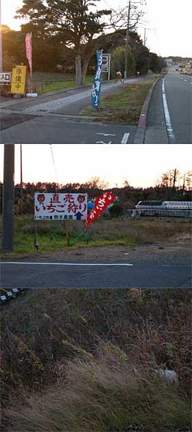 2008_0113_162808.jpg