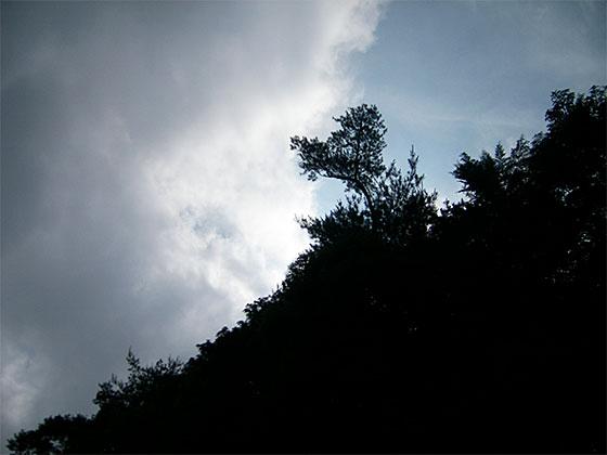 2009_0620_081317AA.jpg